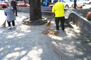 公園清掃H